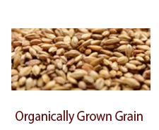 organicgrain2.jpg